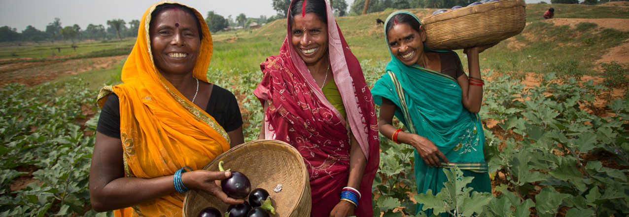 Indian women with baskets of eggplants
