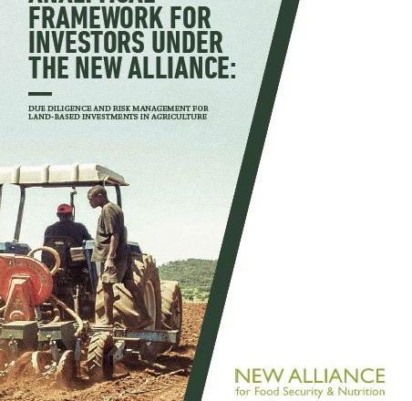Analytical Framework for Investors Under the New Alliance