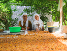 Tajikistan's Path to Prosperity Depends on Creating an Accessible, Equitable Market for Land
